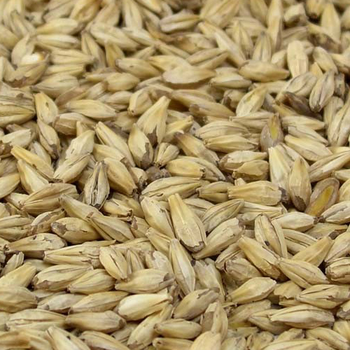 Dextrin (Carapils) Malt 1.5°L